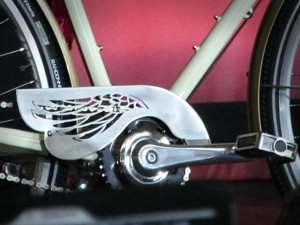 bicicleta-papa-francisco